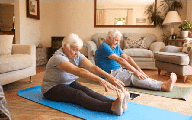 idosos se exercitando